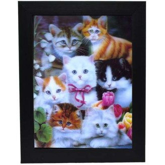 3D Lenticular picture w/ frame Group Kitten