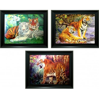 3D Lenticular picture w/ frame - Tiger Triple Images