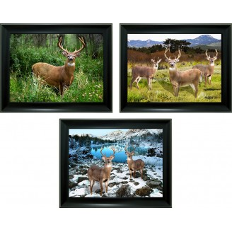 3D Lenticular picture w/ frame - Deer Triple Images