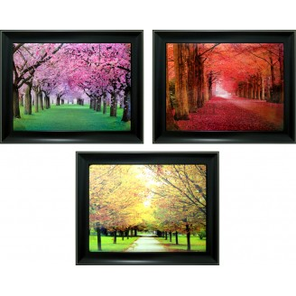 3D Lenticular picture w/ frame - Season tree Foliage Triple Images