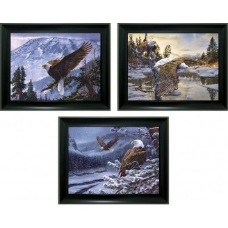 3D Lenticular picture w/ frame - Flying Eagle Triple Images