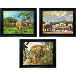 3D Lenticular picture w/ frame – Elephant Triple Images