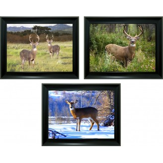 3D Lenticular picture w/ frame – Deer Triple Images