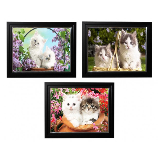 LED Lighted 3D Picture Frame -  Kitten Triple Images