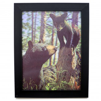 3D Lenticular picture w/ frame Bear cottage