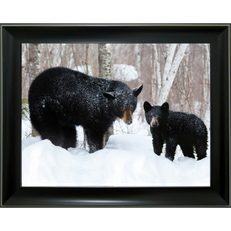 3D Lenticular picture w/ frame Two bear