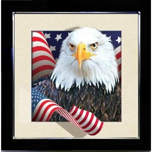 5D Lenticular picture w/ frame American Eagle with Flag