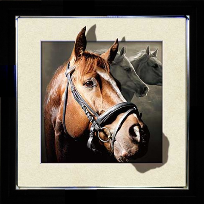 5D Lenticular picture w/ frame Horse