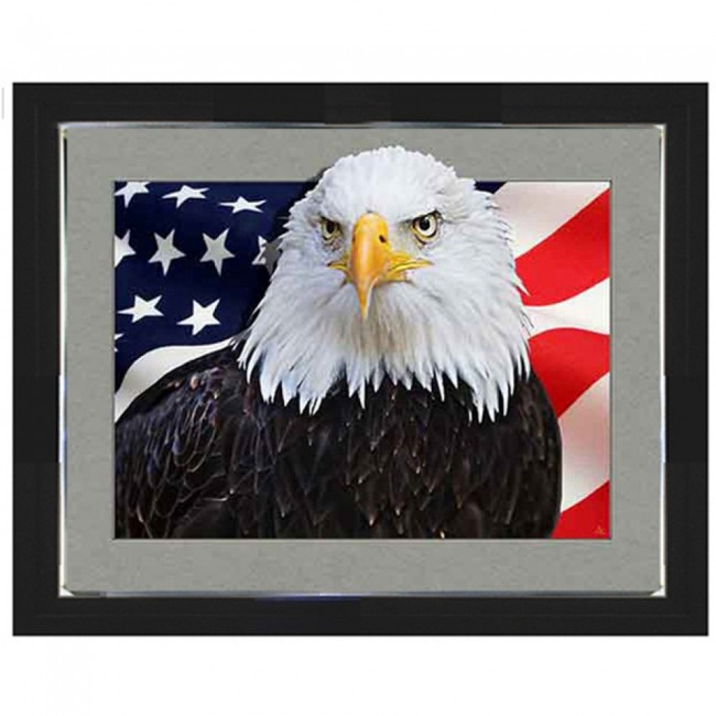 5D Lenticular picture w/ frame Amerian Eagle