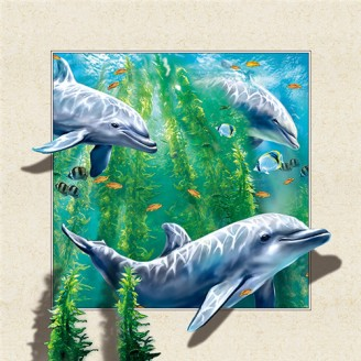 5D Lenticular picture w/ frame Dolphin