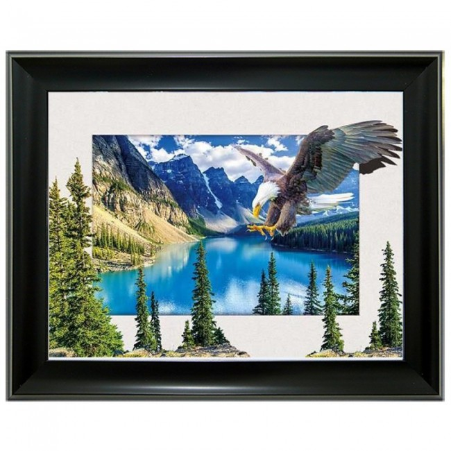 5D Lenticular picture w/ frame Eagle
