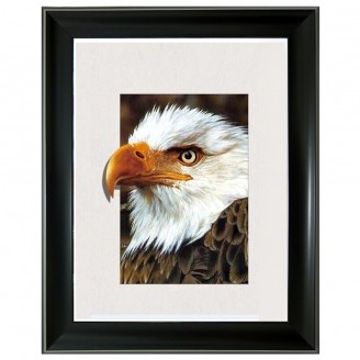 5D Lenticular picture w/ frame Bald Eagle Tiger