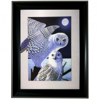 5D Lenticular picture w/ frame White Owl