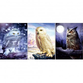 LED Lighted 3D Picture Frame -  owl Triple Images