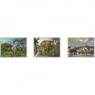 LED Lighted 3D Picture Frame - Elephant Triple Images