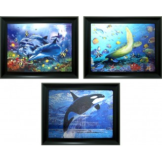 3D Lenticular picture w/ frame - Dolphin Turtle & Fish Triple Images