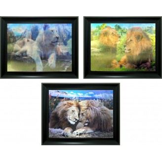 3D Lenticular picture w/ frame – Two Lion Triple Images