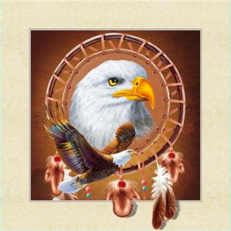 5D Lenticular picture w/ frame Indian Eagle